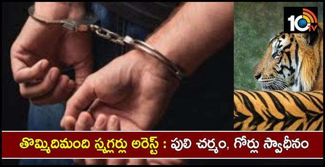 Forest officers arrested 9 smugglers .. Tiger skin ... 17 nails seized