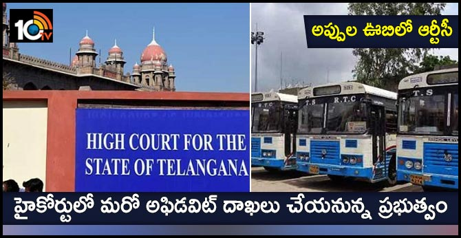 The TS government will file another affidavit in the High Court