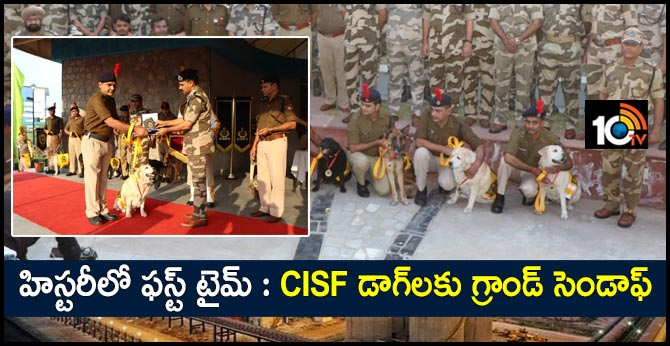 born as a dog retired as a soldier cisf honours canines on retirement