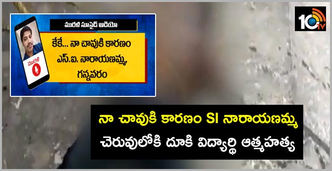 degree student commits suicide