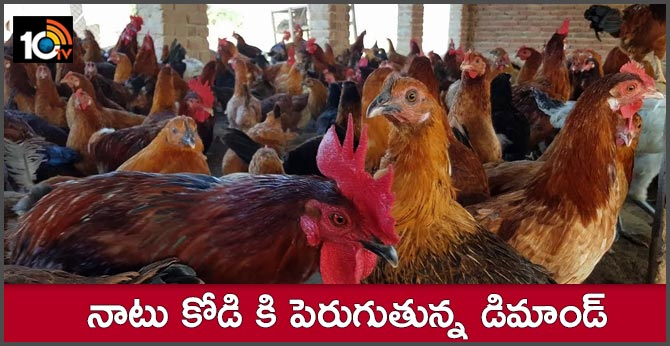 demand for country chicken