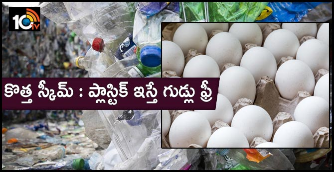 eggs free for plastic