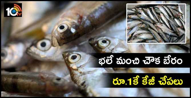 one kg fish for only one rupee..spread awarenes on healthy eating
