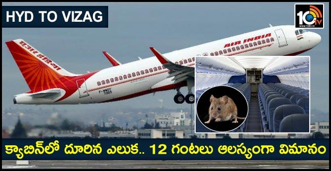 rat found board hyderabad vizag air india flight delays take