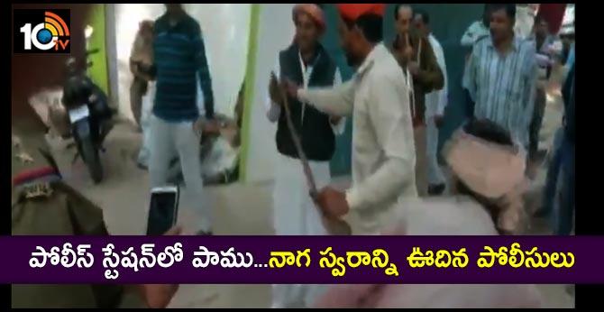 snake in police station police playing naga swaram in bijnor  uttar pradesh