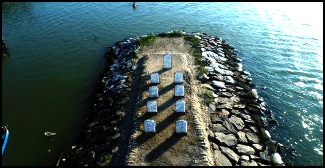 Dying fish get world's first marine cemetery in Kozhikode