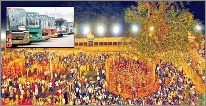 Telangana RTC to operate 4,000 buses to Medaram Sammakka-saralamma jatara