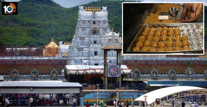free laddu for tirumal devotees