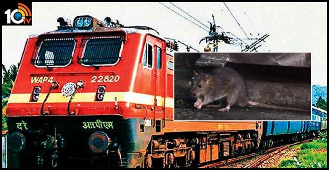 mumbai railways spent Rs.1.5 crore rat kill