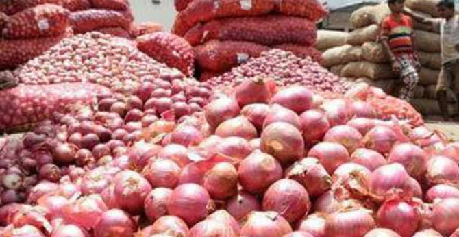 onion price decreased nationwide