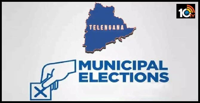 12956 members contest in municipal elections