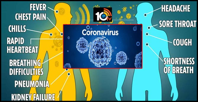 What is a coronavirus? Here is A complete visual guide to the outbreak, China