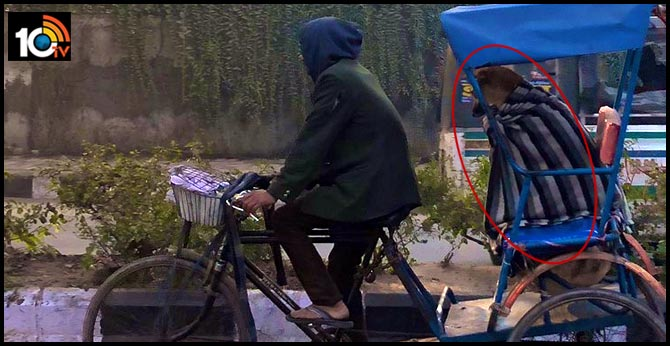 Photos of a Delhi rickshaw transporting a blanket-covered stray dog go viral
