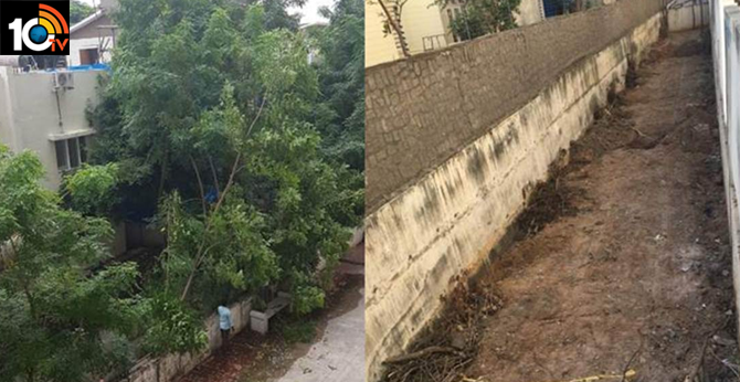 Hyderabad: Gated community slapped with Rs 53k fine for felling 40 trees on its premises