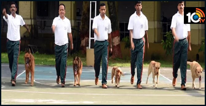 Dog breed that tracked Osama bin Laden to be part of Kolkata Police