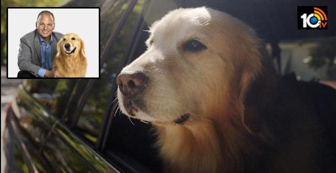 WeatherTech ceo David McNeil who spent rs 43 crore to thank vets who saved his dog's life