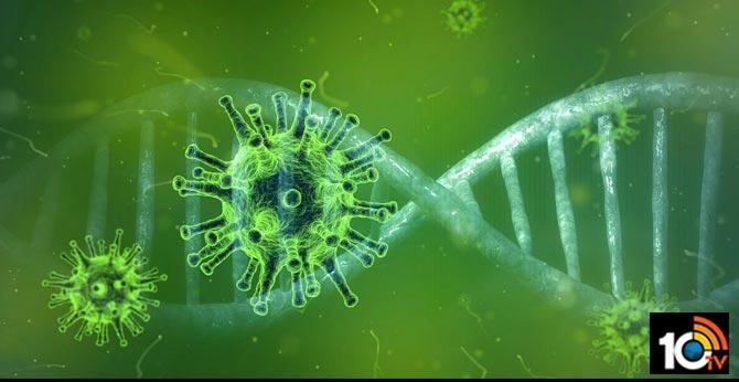 coronavirus positive for husband wife in prakasam district