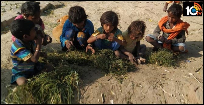 DM, Public Rush to Provide Food After Hungry Kids Seen Eating Grass in Modi's Constituency