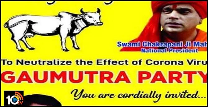 Hindu Mahasabha to hold 'Gaumutra Party' to ward off coronavirus!