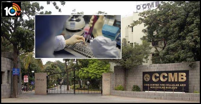 Hyderabad CCMB reday for coronavirus test cases