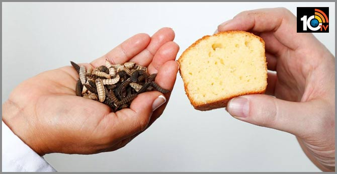 Scientists are deriving grease from insects to replace butter