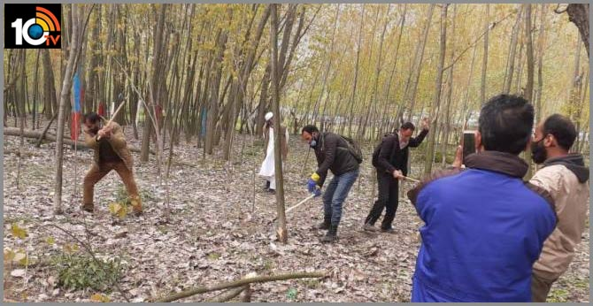 Authorities in Kashmir axing poplar trees to fight COVID-19
