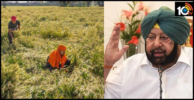 For Farmers Only: In Punjab, District-Wise Relief From Coronavirus Lockdown