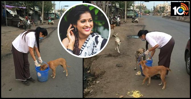 Rashmi Gautham Feed Street Dogs