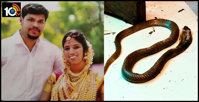 Kerala Husband killed his wife with a snake bite