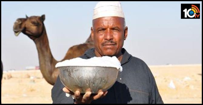 camel milk litre 600 rupees
