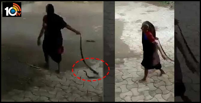 Fearless Grandma Drags Cobra, Tosses It Away In Jaw Dropping
