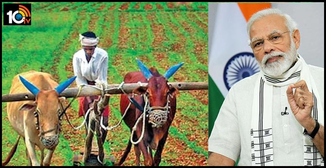 Central Cabinet Key Decisions: More Subsidies to Farmers