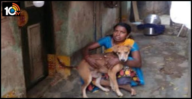 Chennai woman eats once a day, saves the rest for her 13 dogs