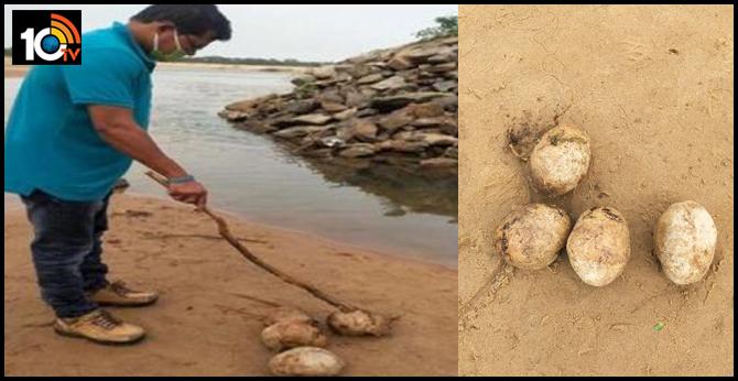 four human skulls recovered near river bank in odisha