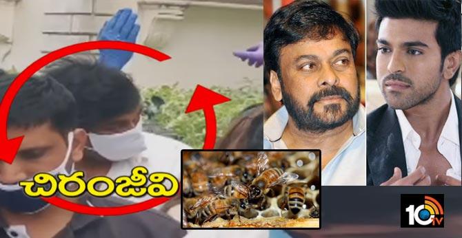honey bees attack chiranjeevi, ramcharan