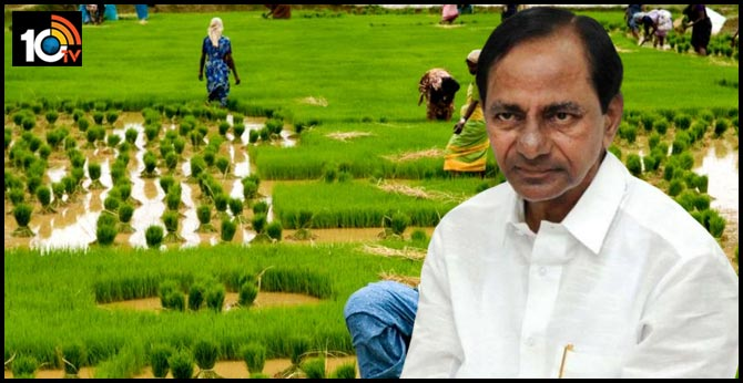 telangana cm kcr focus on agriculture new policy