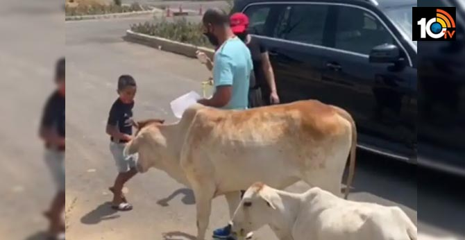 "Shikhar Dhawan Feeds ""Hungry Animals"" With Family, Harbhajan Singh, Kuldeep Yadav Applaud Batsman"