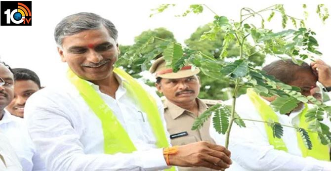 aim of the Telangana government is to turn the farmer into a power: Minister Harishrao