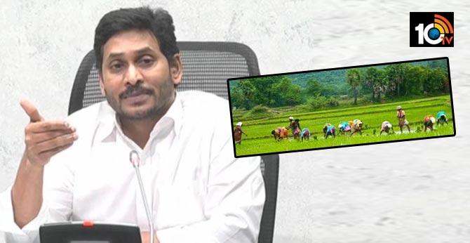 ap cm ys jagan releases rs. 596 crore 2018-19 pending rabi crop insurance