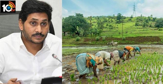cm ys jagan releases 2018 19 pending rabi crop insurance