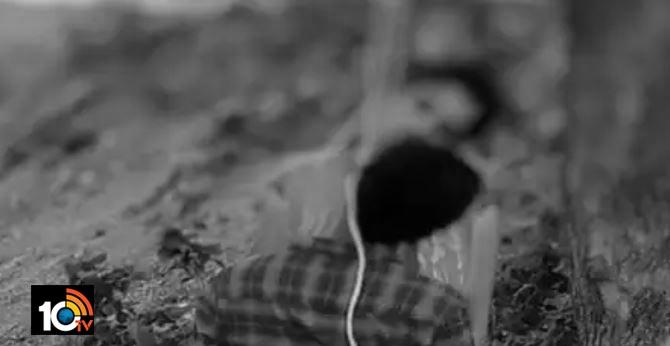 love couple commits suicide in vikarabad Telangana