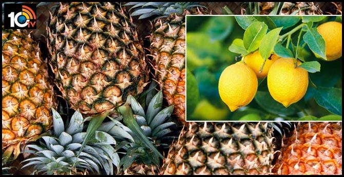 Tripura CM to Provide Free Pineapple and Lemon Juice to Boost Immunity
