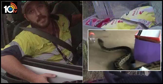 Queensland driver escapes fine while speeding to hospital after being attacked by snake