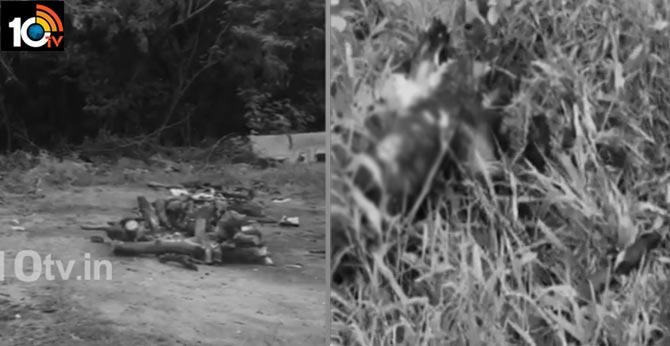 కరోనా రోగి మృతదేహాన్ని పీక్కుతిన్న కుక్కలు, హైదరాబాద్లో దారుణం