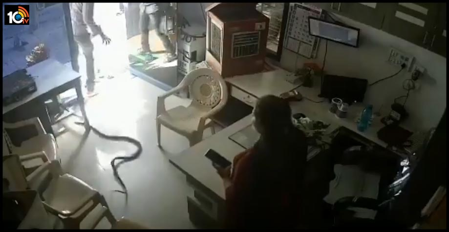 refused-fuel-in-can-man-throws-live-snake-in-pump-owners-cabin-in-mumbai-1