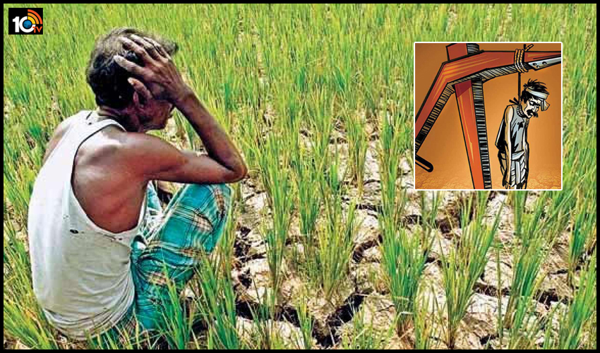 రైతుల ఆత్మహత్యలపై డేటా లేదు: కేంద్రం