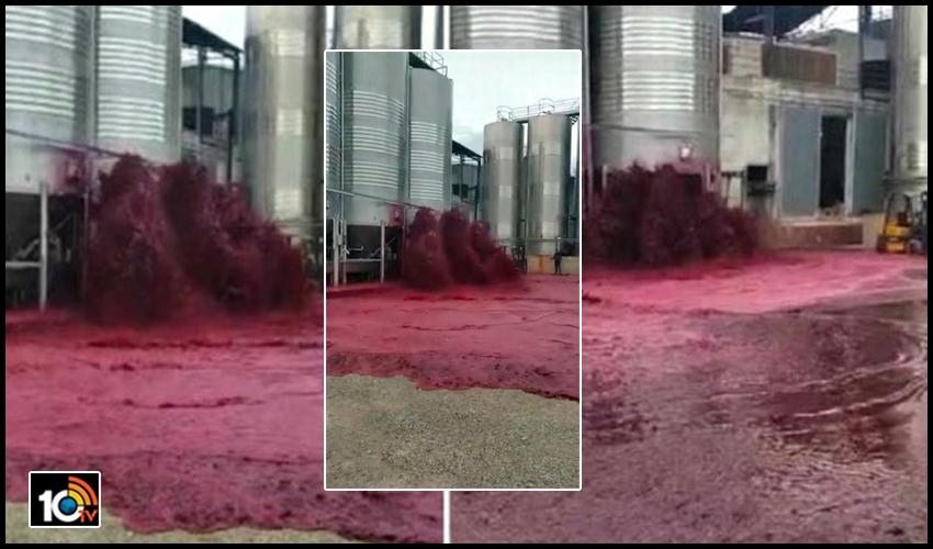wine tank : 50 వేల లీటర్ల వైన్ నేలపాలు