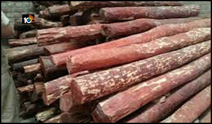 red-sandalwood-worth-rs-10-crore-seized-in-tamil-nadu