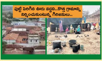 Adilabad Tribals New Village Construction