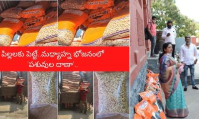 Cattle Feed For Mid Day Meal In Pune Municipal School